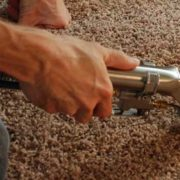 Rug Stain Removal Guide